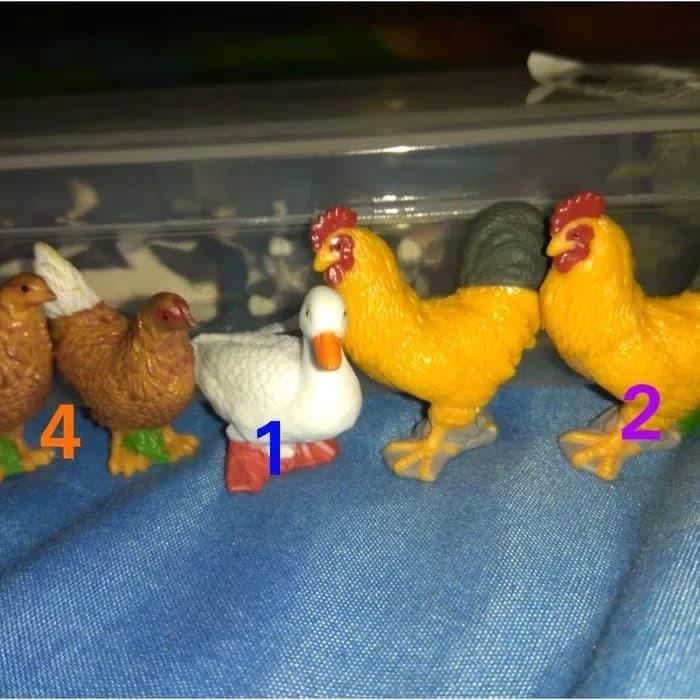 85 Koleksi Gambar Binatang Ayam Betina Terbaru