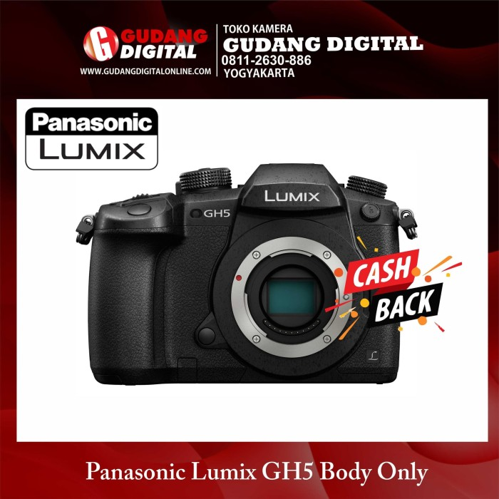 harga Kamera mirrorless panasonic lumix dmc-gh5 / dmc gh5 body only Tokopedia.com