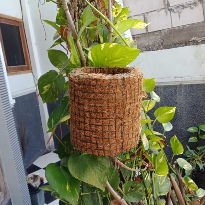 Jual Pot Bunga Tanaman Anggrek Pot Bonsai Pot Gantung Dari Sabut