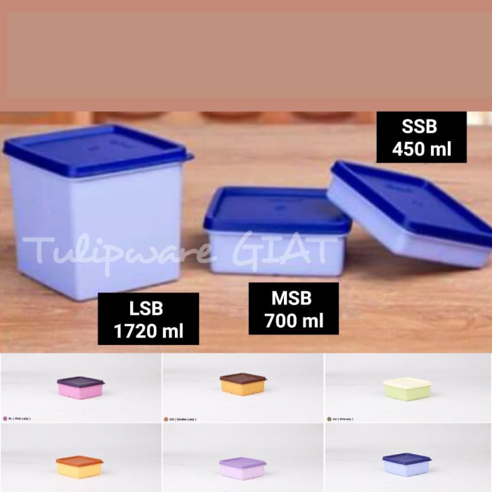 Foto Produk Family Box Set / Kotak Penyimpanan Twin Tulipware Indonesia dari TULIPWARE collection