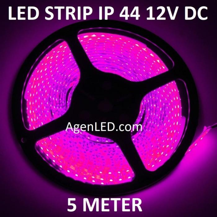 Foto Produk Lampu LED STRIP 3528 SMD 2835 IP44 IP 44 outdoor DC ledstrip ungu PINK dari AgenLED