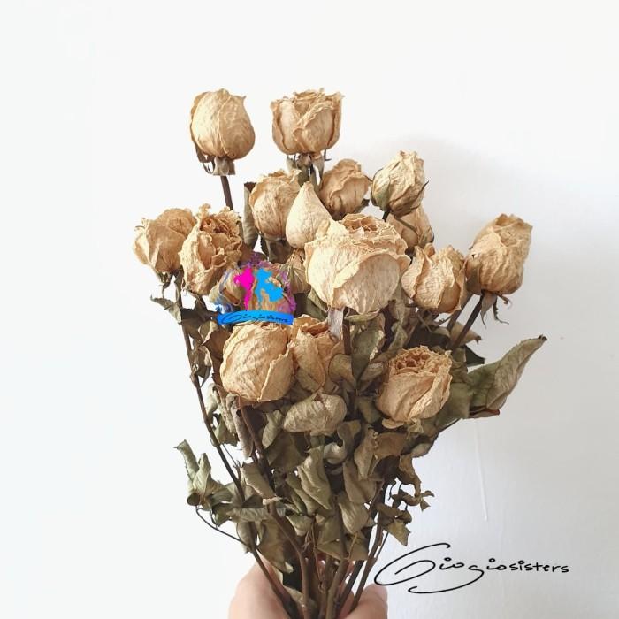 Jual Dried Rose White Bunga Mawar Putih Kering Dried Roses Kota Denpasar Giogio Sisters Tokopedia