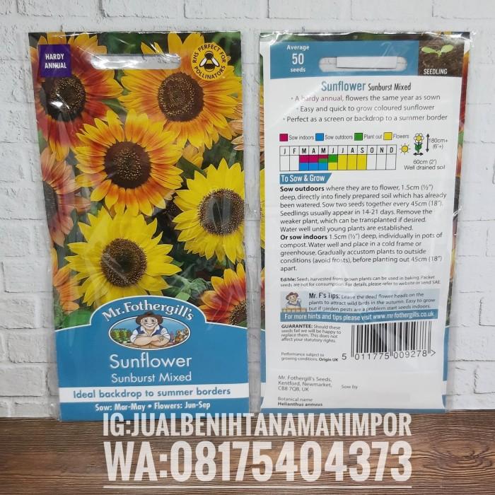 Contoh Teks Deskripsi Tentang Bunga Matahari - Terkait Teks