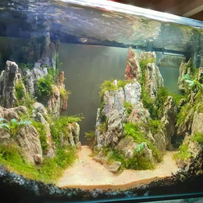 Jual Aquascape Full Set 40cm Kab Bekasi Walyadin Shop Tokopedia
