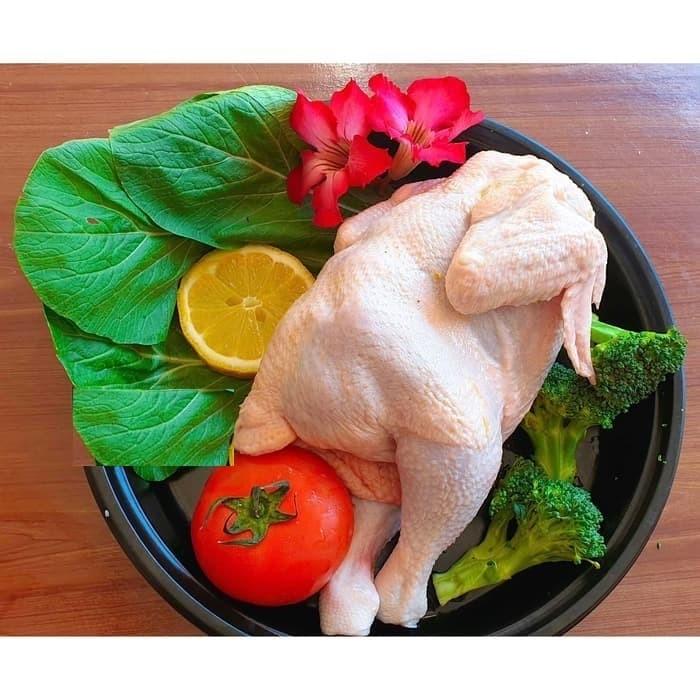 Foto Produk Ayam Negeri Ukuran 8-9 Kualitas Premium dari Toko Jogja Farm Grup