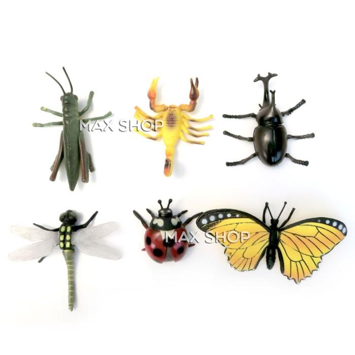 Foto Produk Mainan Edukasi Anak Binatang Insect Serangga Kepik Kupu Kupu Kumbang dari MAXSHOP-ONLINE