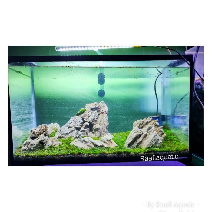 Jual Aquascape Sandstone Iwagumi Jakarta Selatan Raafi Aquatic Tokopedia