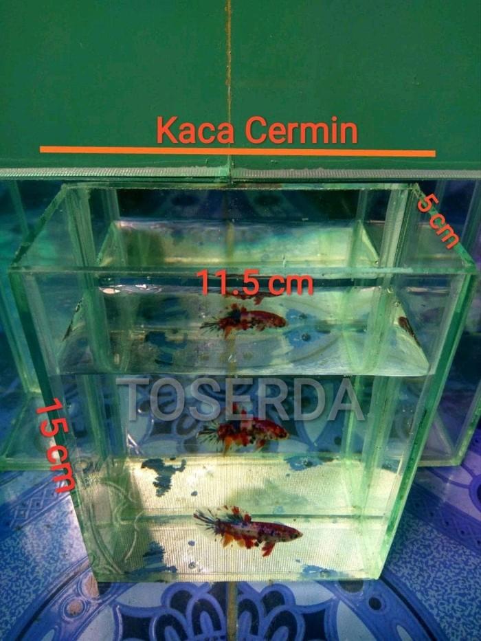 Jual Paling Terlaris Akuarium Ikan Cupang Ikan Guppy Akuarium Mini Untuk Jakarta Barat Fauziah46 Tokopedia