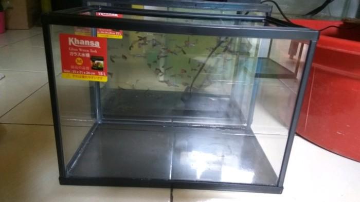 Jual Aquarium Khansa Ikan Cupang Guppy Reptil Ukuran Size M Parts Kota Semarang Aurelita Shop Tokopedia