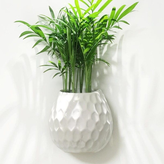 Jual Creative White Ceramic Wall Vase Outdoor Hydroponics Plant Hanging Jakarta Barat Juragan Ayumi Tokopedia