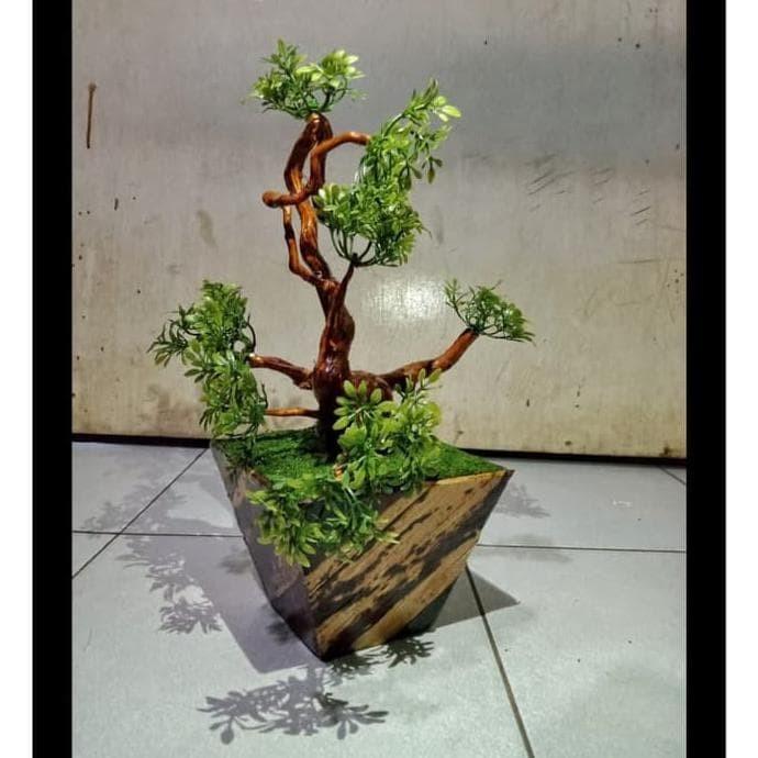 Jual Liadesi2 Tanaman Hias Pohon Akar Bonsai Alami Bunga Plastik Imitasi Jakarta Pusat Desishoplia Tokopedia