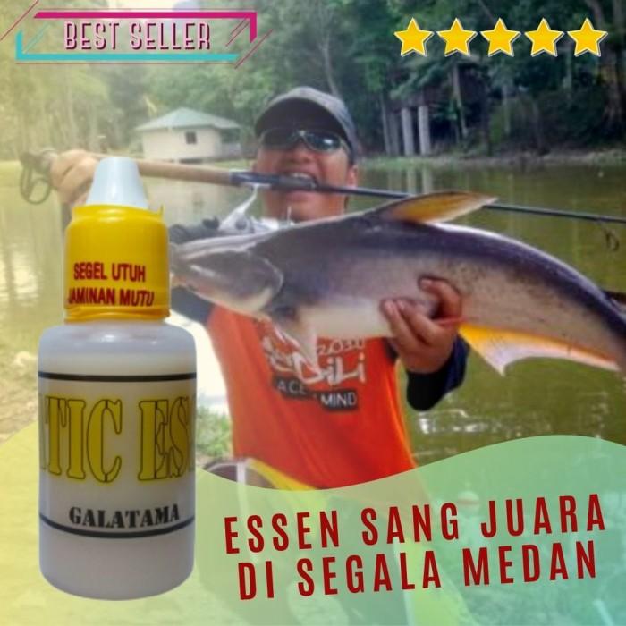 Jual Aquatic Essen Ikan Patin Galatama Umpan Jitu Paling Ampuh Mur Kab Tangerang Mentaristore2020 Tokopedia