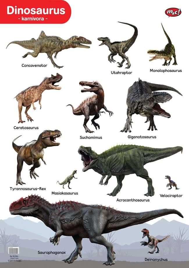 gambar dinosaurus asli hitam putih