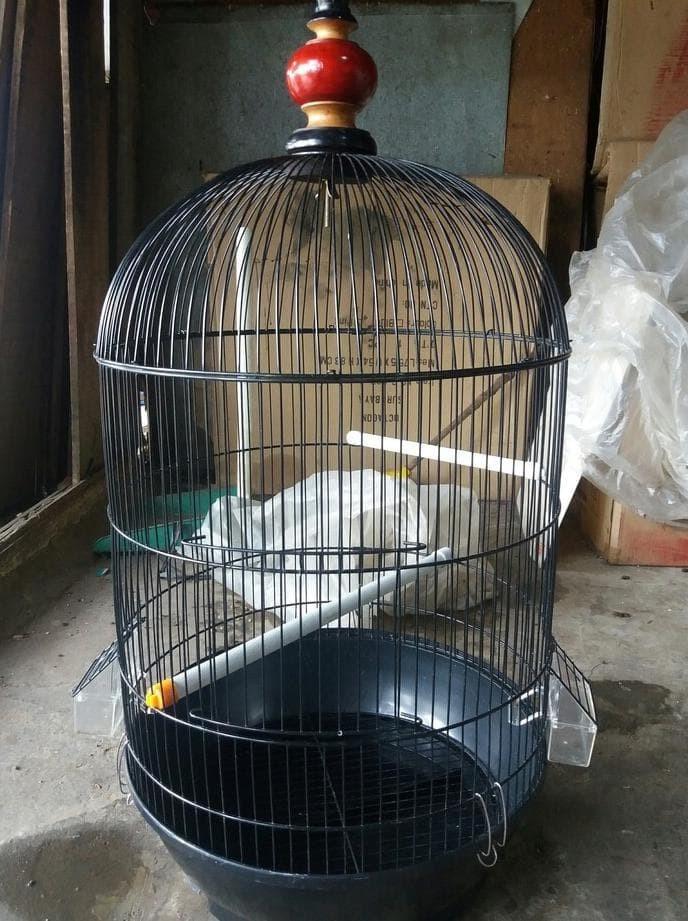 Foto Produk GRAB GOJEK SANGKAR KANDANG BESI JUMBO UNTUK LOVEBIRD BEO PALEK dari AL'FASHOP