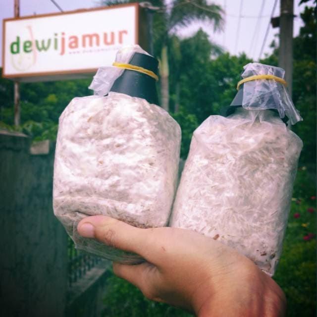 Foto Produk Bibit Jamur Tiram Putih kemasan plastik dari DewiJamur