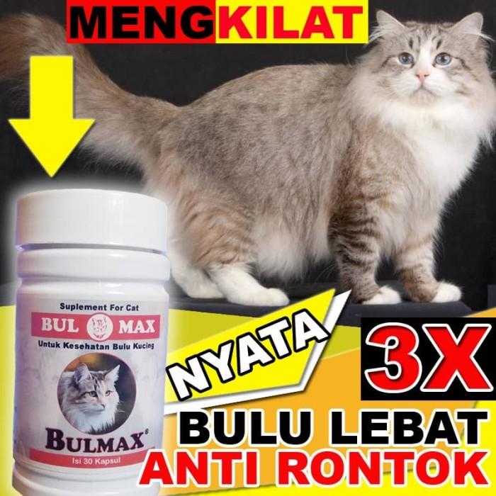 Jual Bm15 Makanan Kucing Bulu Lebat Vitamin Bulu Kucing Rontok Bulmax Jakarta Selatan Cantikin Store Tokopedia