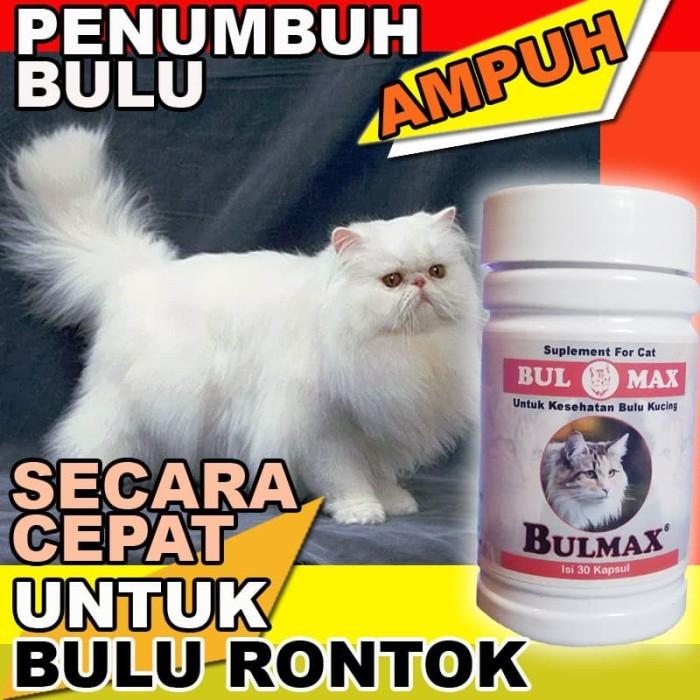 Jual Bm06 Obat Bulu Kucing Rontok Ampuh Penumbuh Bulu Kucing Cepat Bulmax Jakarta Selatan Cantikin Store Tokopedia