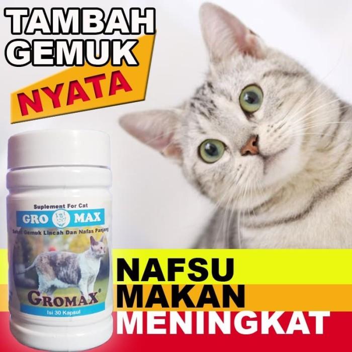 Jual Gm02 Vitamin Kucing Untuk Nafsu Makan Kucing Gemuk Terbaik Gromax Jakarta Selatan Cantikin Store Tokopedia