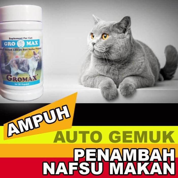 Jual Gm01 Vitamin Kucing Gemuk Penambah Nafsu Makan Kucing Sakit Gromax Jakarta Selatan Cantikin Store Tokopedia