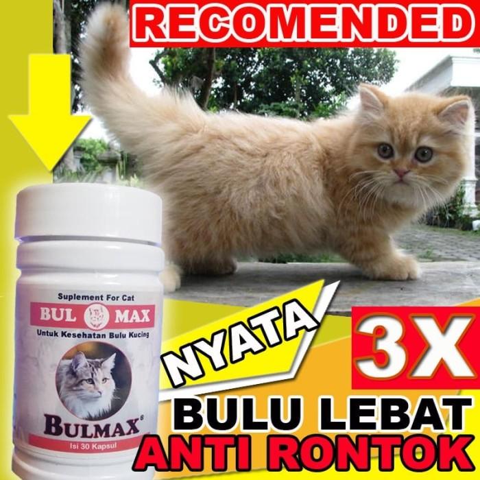 Jual Bm14 Vitamin Penumbuh Bulu Kucing Yang Rontok Cepat Lebat Bulmax Jakarta Selatan Cantikin Store Tokopedia