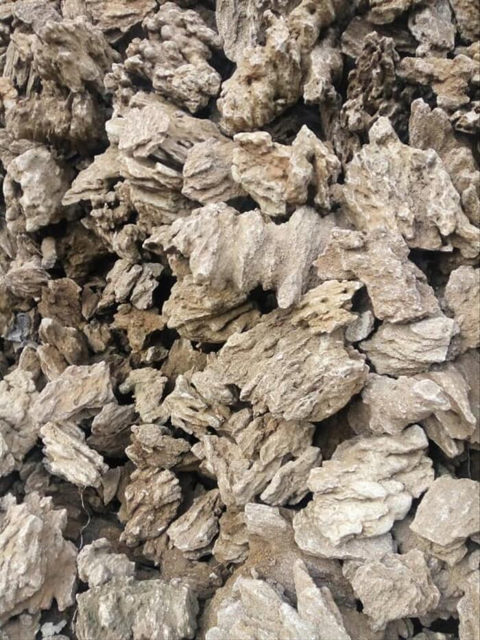 Jual Sale Batu Aquascape Aquarium Dark Stone Bela Stone Fosi Jakarta Barat Nilla Market Tokopedia