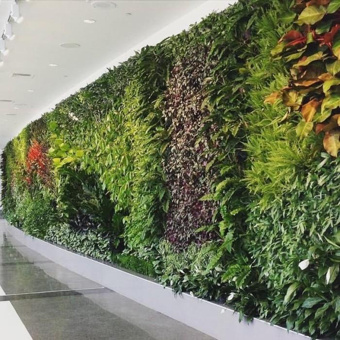 Jual Jasa Pembuatan Taman Green Wall Vertical Garden Kab Bogor Er Landscape Tokopedia