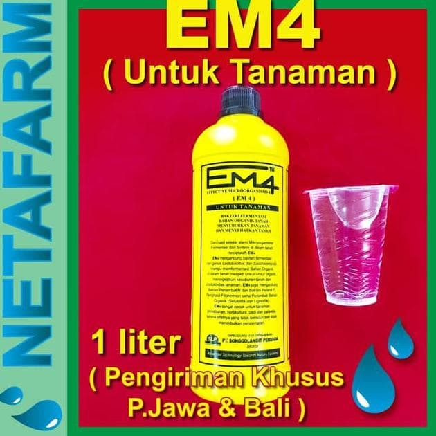 Jual Termurah Em4 Tanaman Pertanian Volume 1 Liter Terjamin Jakarta Utara Ansas Tokopedia