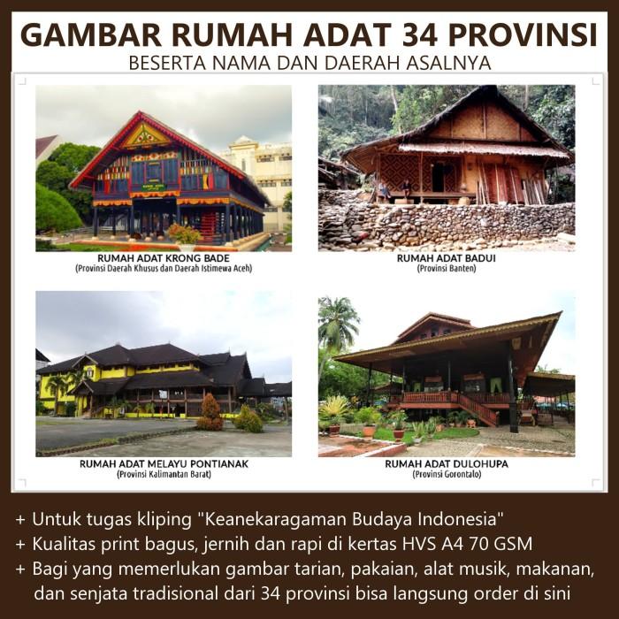 Jual Gambar Rumah Adat 34 Provinsi Di Indonesia Kota Surakarta Tugas Sekolahan Tokopedia