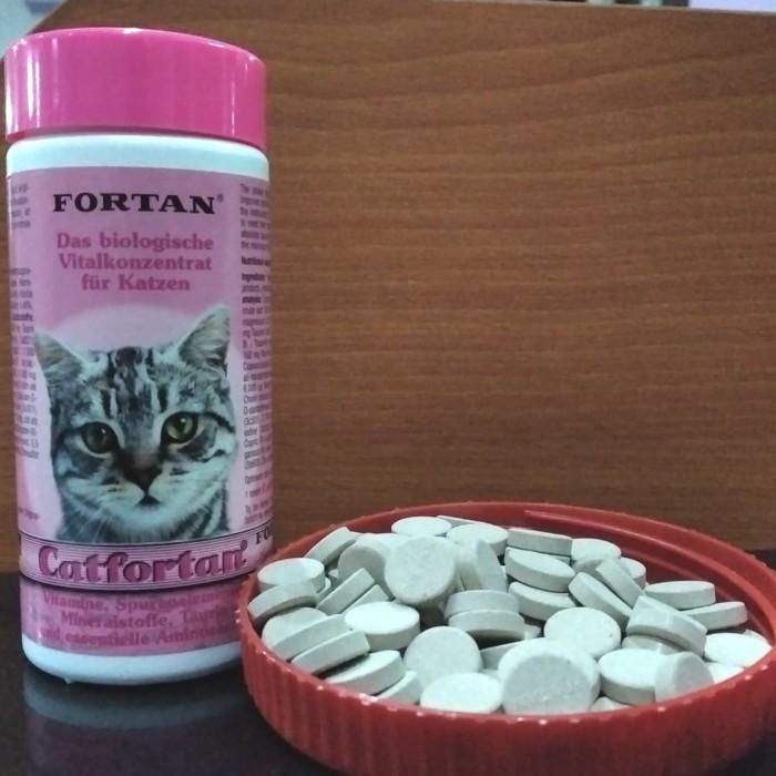 Jual Fortan Catfortan Ecer Per 1 Tablet Multivitamin Kucing Vitamin Kucing Kota Depok Power Pet Shop Tokopedia