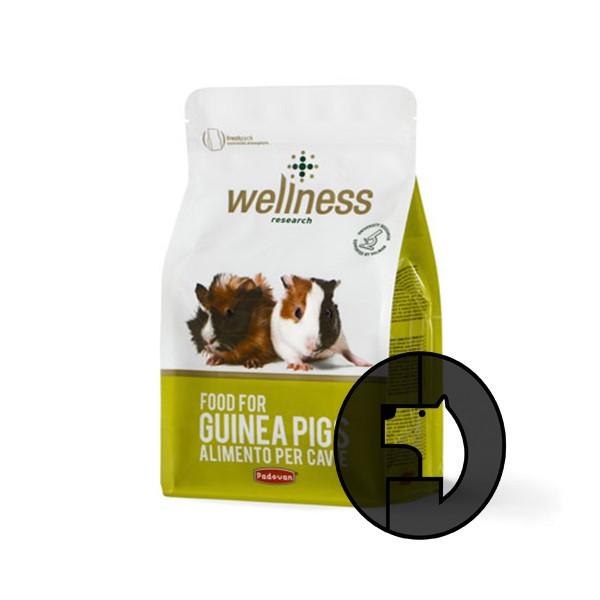 Foto Produk EXP 12 FEB 20 wellness 1 kg food for guinea pigs dari F.J. Pet Shop
