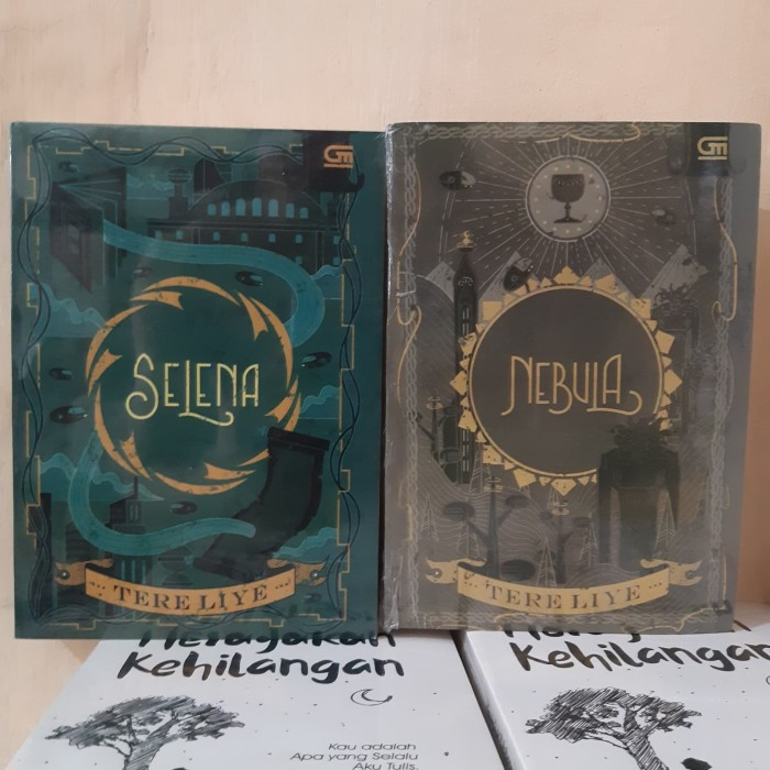 Foto Produk Paket 2 Novel Selena dan Nebula - Tere Liye dari Revanda Book Collection