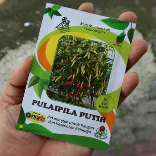 Foto Produk Cabai Rawit Putih IPB 350biji dari mewalik-jaya