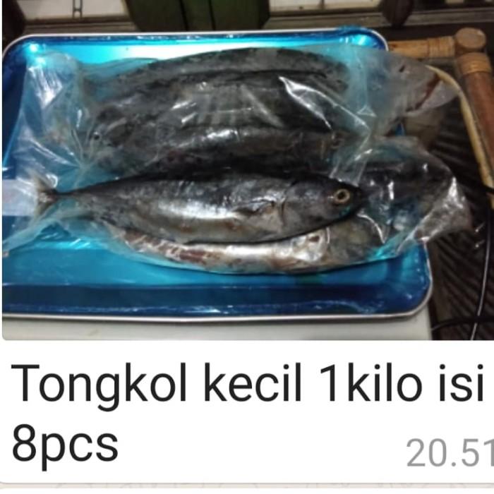 Jual Ikan Tongkol Kecil Jakarta Selatan Af Fish Tokopedia
