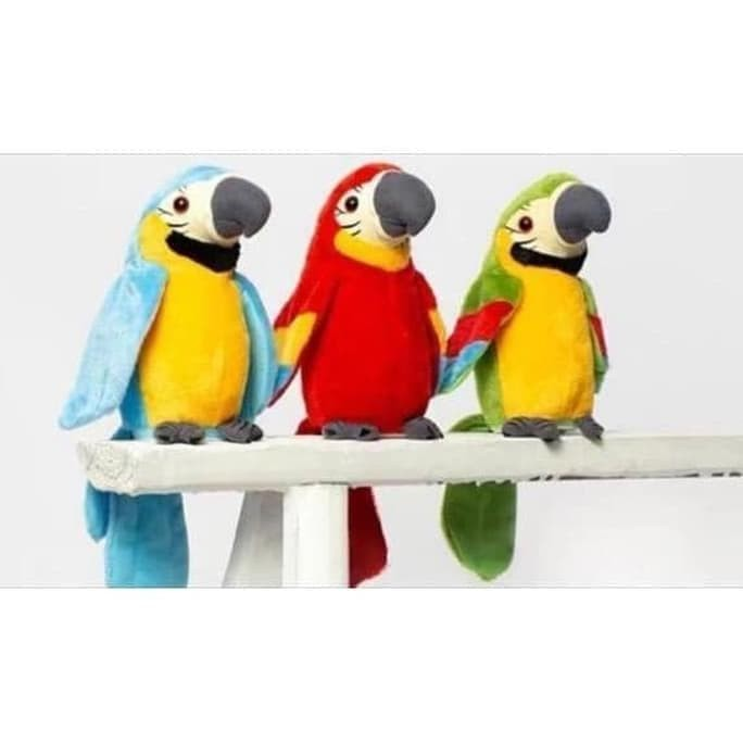 Jual Stok Terbaru Talking Bird Burung Beo Macau Biru Muda Jakarta Selatan Wawan Poy 1 Tokopedia