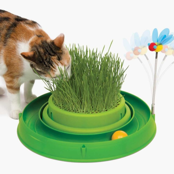 Foto Produk Catit Play Circuit Ball With Cat Grass Mainan Kucing Rumput Track Bola dari Hime petshop