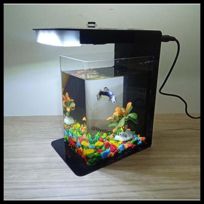 Jual Promo Betta Fish Tank Aquarium Mini Akrilik Mini Aquascape Jakarta Timur Dylan Store2 Tokopedia