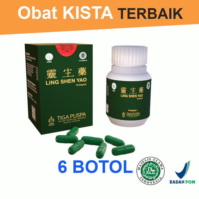 Foto Produk Obat Kista Herbal CIna LING SHEN YAO Kapsul BANDUNG 6 Botol Diskon 5% dari Lingshenyao(Obat Herbal)