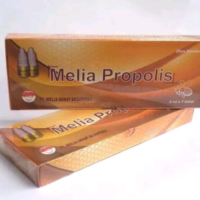 Foto Produk PROPOLIS-MELIA-BOX-PERBOX ISI 7BOTOL dari Brother Sister Top
