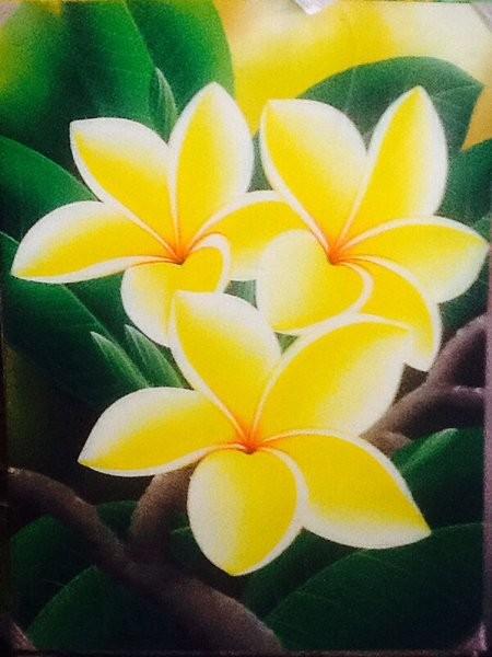Jual Lukisan Bunga Kamboja Kembang Jepun Plumeria 80 X 60 Kanvas K Kab Semarang Fauziyahnor Tokopedia