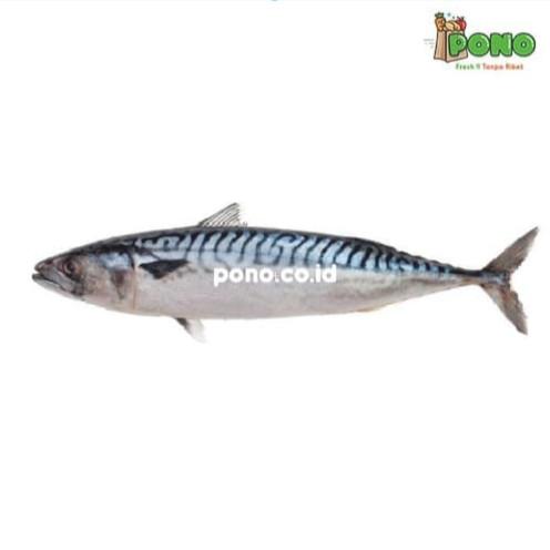 Foto Produk Ikan Pindang Salem 1 pack dari Pono Area Solo