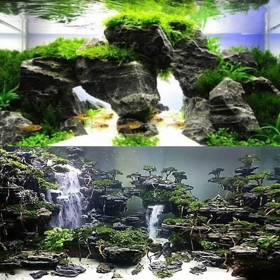 Jual Batu Besi Aquascape Per 1kg Batu Besi Aquascape Kota Tangerang Lab Aquarium Tokopedia