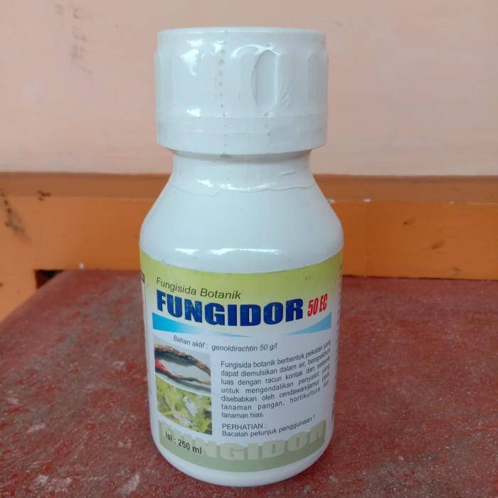 Jual Fungisida Fungidor 250 Ml Untuk Patek Cacar Antraknosa Eceran Kab Pacitan Victory Trans Tokopedia