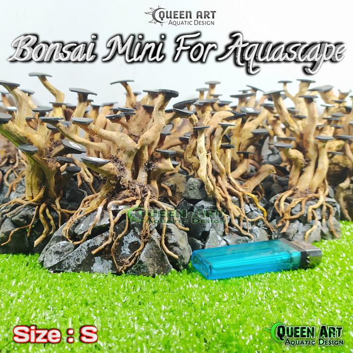 Jual Size S Bonsai Aquascape Akar Senggani Untuk Aquarium Kota Bandung Adiet Gems Collection Tokopedia