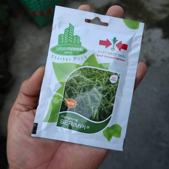 Foto Produk Kangkung Serimpi Panah Merah 500biji dari mewalik-jaya