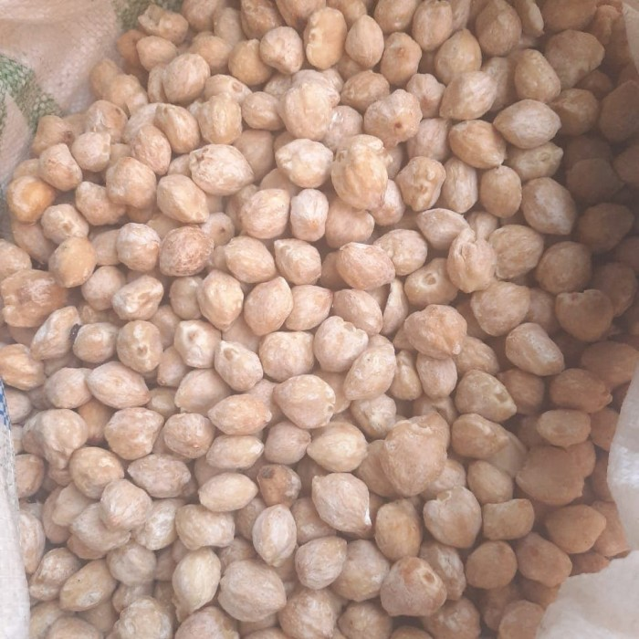 Foto Produk Kemiri/Kemiri Bulat 1 kg dari osp shop