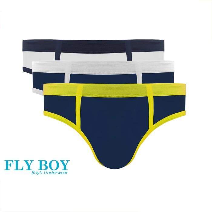 Foto Produk Flyboys | Celana Dalam Anak Cowok | Underwear | FBC 3217 1PACK ISI 3 - XL dari Nathalie Kids