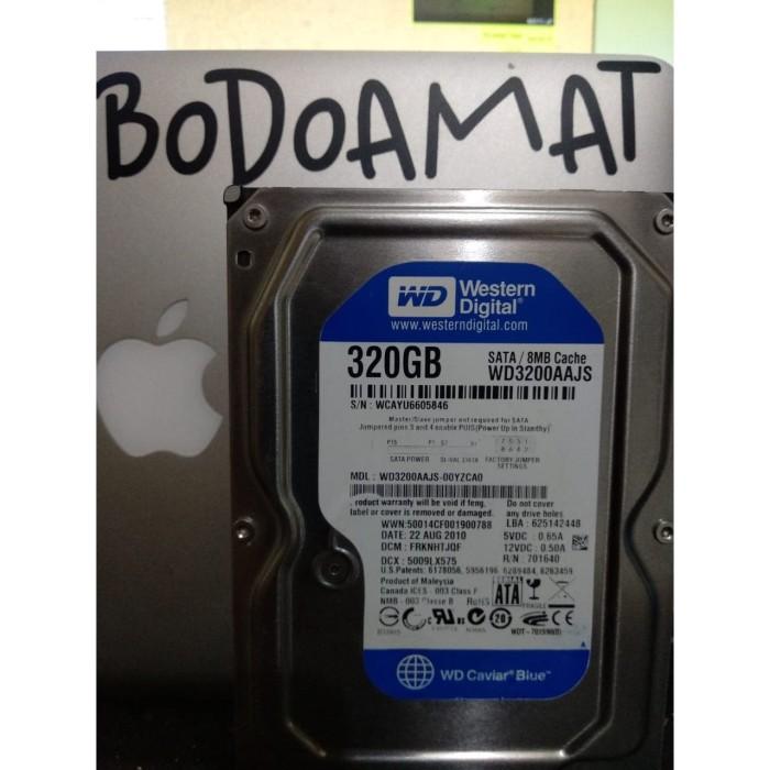 Foto Produk Hardisk Internal PC 320 GB Full Game dari Bodo Amat