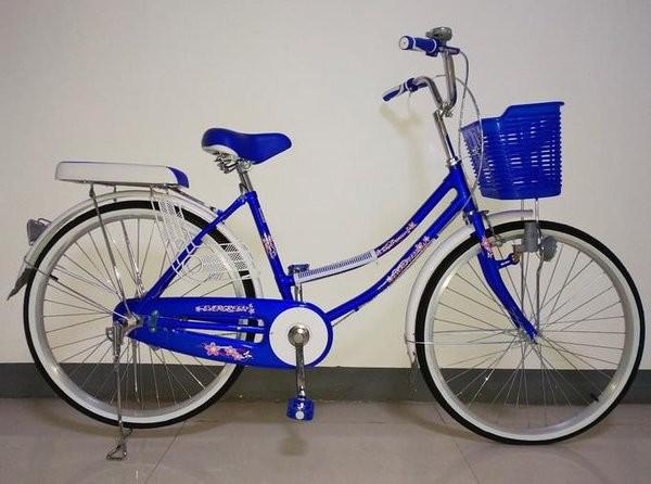 Foto Produk Sepeda mini evergreen 26inc perkakas dari Agus62Herlin