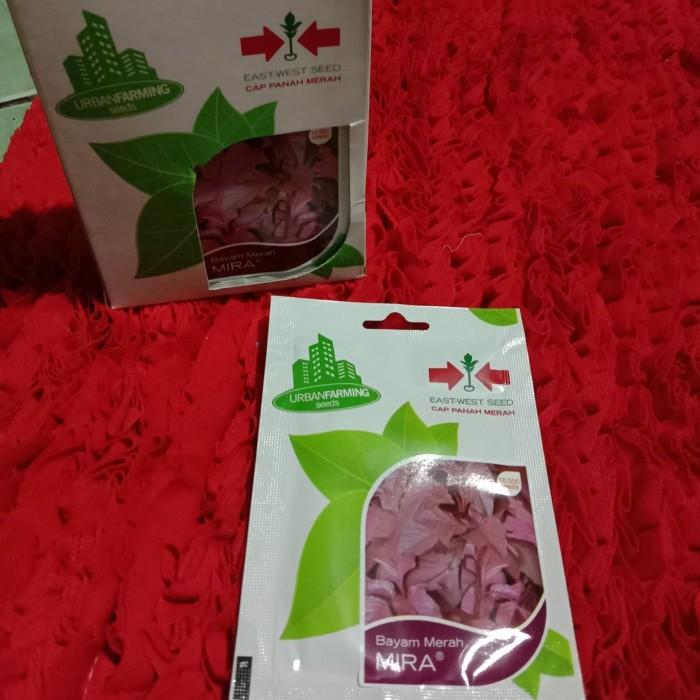 Foto Produk benih bayam merah dari Aa818_Hydroponic