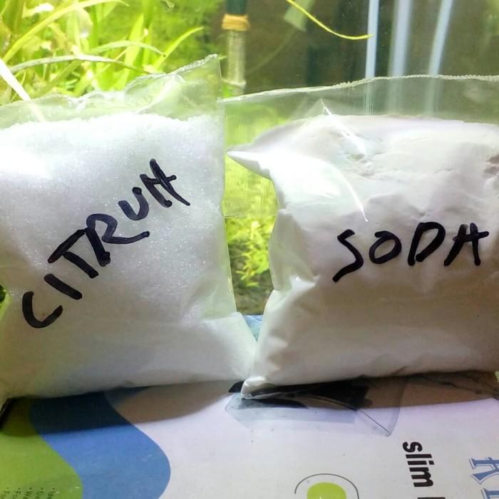 Jual Co2 Diy Aquascape Cisod Citric Acid Citrun Baking Soda Kab Pasuruan Dot Coffee Tokopedia